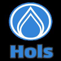 Código promocional Hols